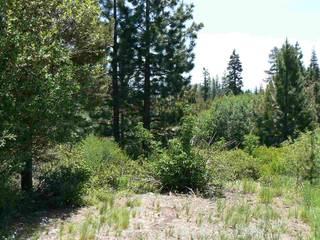 Listing Image 6 for 16567 Skislope Way, Truckee, CA 96161