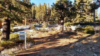 Listing Image 4 for 1492 Davos Court, Alpine Meadows, CA 96146-0000