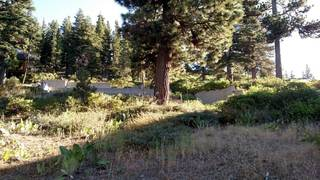 Listing Image 5 for 1492 Davos Court, Alpine Meadows, CA 96146-0000