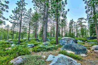 Listing Image 11 for 10624 Bear Run, Truckee, CA 96161-000