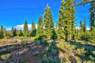 Listing Image 11 for 9321 Nine Bark Road, Truckee, CA 96161