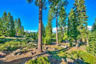 Listing Image 8 for 9321 Nine Bark Road, Truckee, CA 96161