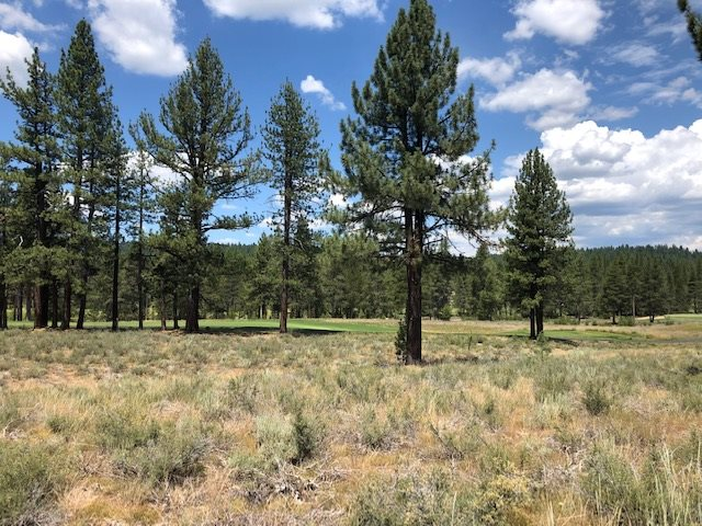 Image for 11545 Henness Road, Truckee, CA 96161-2152