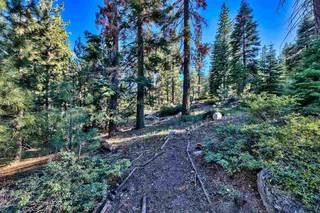 Listing Image 11 for 15900 Donner Pass Road, Truckee, CA 96161