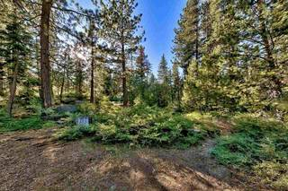 Listing Image 8 for 15900 Donner Pass Road, Truckee, CA 96161