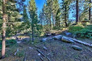 Listing Image 9 for 15900 Donner Pass Road, Truckee, CA 96161