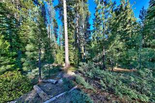 Listing Image 10 for 15900 Donner Pass Road, Truckee, CA 96161