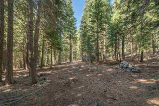 Listing Image 21 for 13677 Davos Drive, Truckee, CA 96161