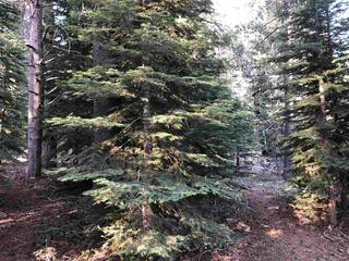 Listing Image 2 for 10395 Jeffrey Way, Truckee, CA 96161