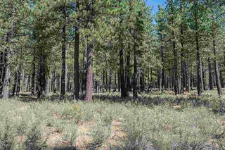 Listing Image 11 for 11497 Henness Road, Truckee, CA 96161