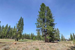Listing Image 12 for 9185 Heartwood Drive, Truckee, CA 96161
