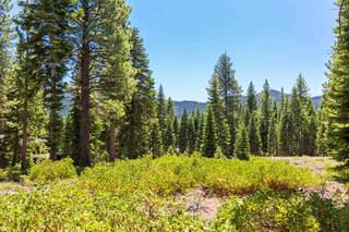Listing Image 4 for 10912 Olana Drive, Truckee, CA 96161