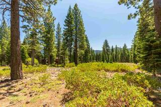 Listing Image 5 for 10912 Olana Drive, Truckee, CA 96161