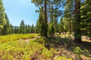 Listing Image 6 for 10912 Olana Drive, Truckee, CA 96161