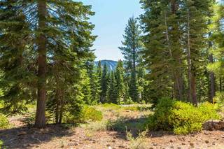Listing Image 7 for 10912 Olana Drive, Truckee, CA 96161