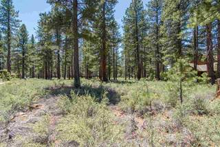 Listing Image 5 for 12385 Caleb Drive, Truckee, CA 96161