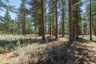 Listing Image 7 for 12385 Caleb Drive, Truckee, CA 96161