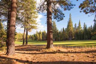 Listing Image 13 for 13570 Northwoods Boulevard, Truckee, CA 96161