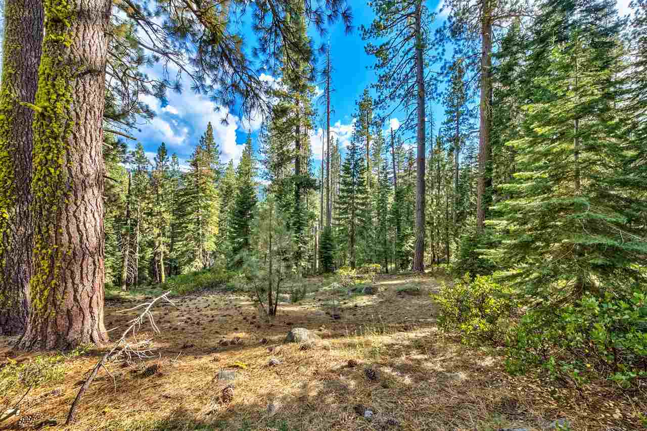 Image for 10030 Donner Lake Road, Truckee, CA 96161