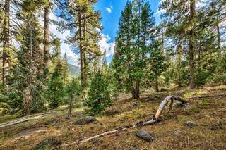 Listing Image 12 for 10030 Donner Lake Road, Truckee, CA 96161