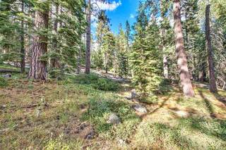 Listing Image 13 for 10030 Donner Lake Road, Truckee, CA 96161