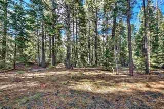 Listing Image 18 for 10030 Donner Lake Road, Truckee, CA 96161