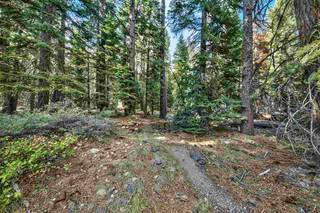 Listing Image 19 for 10030 Donner Lake Road, Truckee, CA 96161