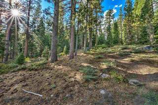 Listing Image 20 for 10030 Donner Lake Road, Truckee, CA 96161