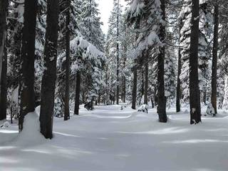 Listing Image 13 for 0 Old Donner Summit Road, Norden, CA 95724
