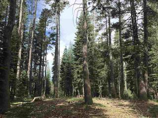 Listing Image 15 for 0 Old Donner Summit Road, Norden, CA 95724