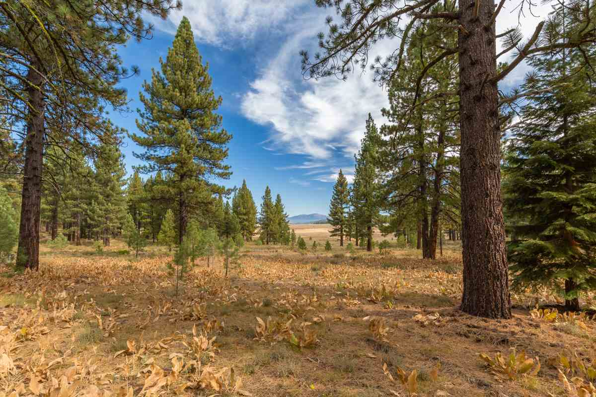 Image for 7435 Lahontan Drive, Truckee, CA 96161-5121