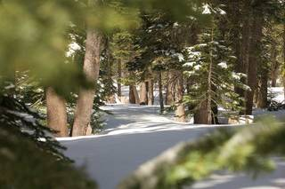 Listing Image 14 for 0 Old Donner Summit Road, Norden, CA 95728