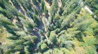 Listing Image 17 for 0 Old Donner Summit Road, Norden, CA 95728
