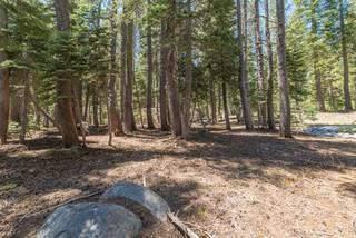 Listing Image 17 for 6219 Alpine Way, Soda Springs, CA 95728