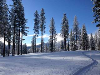 Listing Image 21 for 9273 Heartwood Drive, Truckee, CA 96161