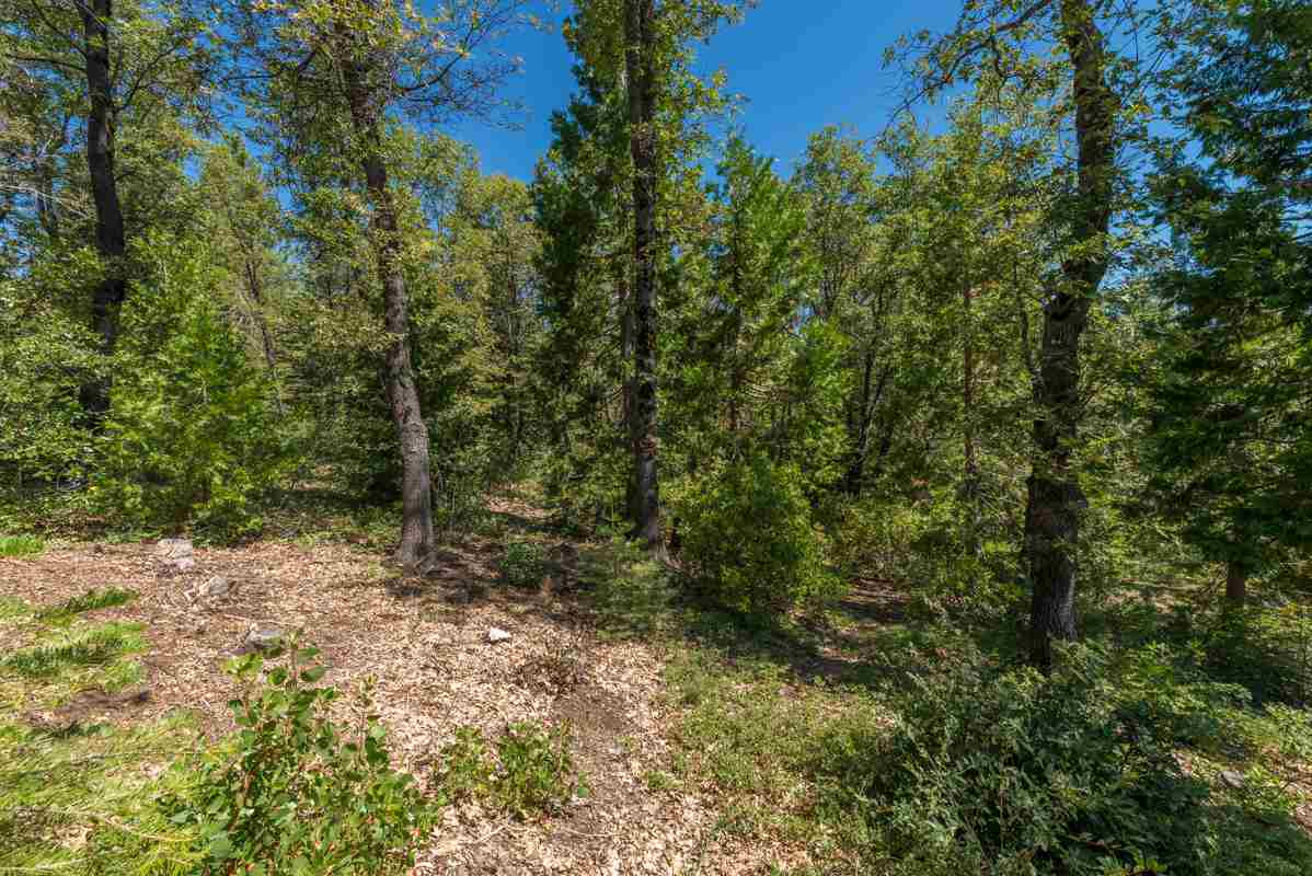 Image for 39366 Kearsarge Mill Road, Alta, CA 95701