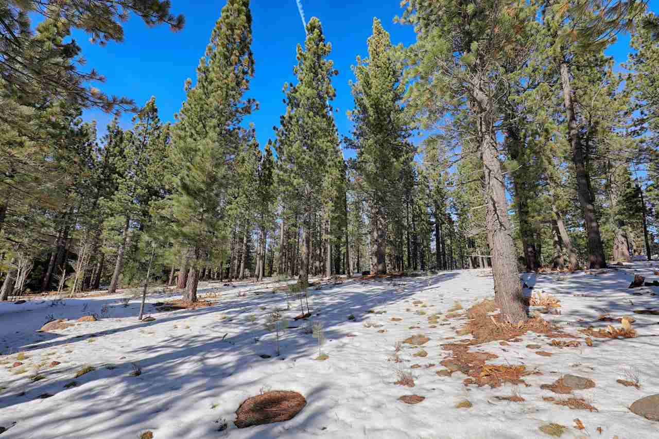 Image for 250 Laura Knight, Truckee, CA 96161