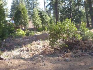 Listing Image 16 for 162 Peninisula Drive, Lake Almanor, CA 96137
