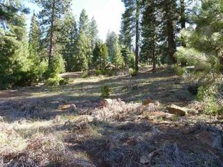 Listing Image 17 for 162 Peninisula Drive, Lake Almanor, CA 96137