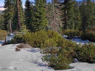 Listing Image 4 for 9332 Nine Bark Road, Truckee, CA 96161