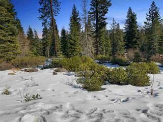 Listing Image 5 for 9332 Nine Bark Road, Truckee, CA 96161