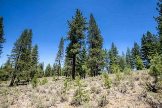 Listing Image 11 for 11080 Ghirard Road, Truckee, CA 96161-2152