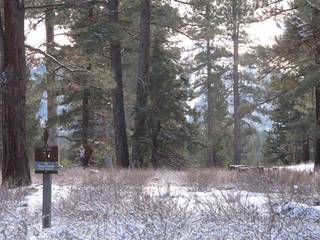 Listing Image 1 for 12885 Caleb Drive, Truckee, CA 96161