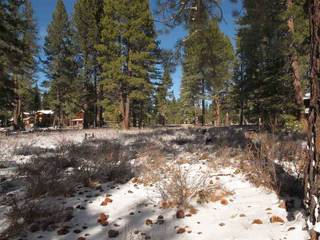 Listing Image 3 for 12885 Caleb Drive, Truckee, CA 96161