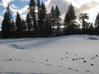 Listing Image 5 for 12885 Caleb Drive, Truckee, CA 96161