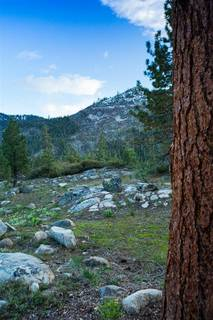 Listing Image 6 for 16400 Donner Pass Road, Truckee, CA 96161