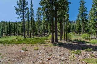 Listing Image 5 for 9499 Dunsmuir Way, Truckee, CA 96161