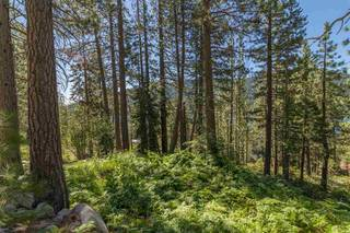 Listing Image 2 for 10455 Donner Lake Road, Truckee, CA 96161