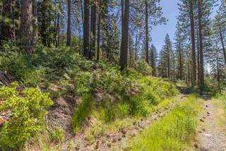 Listing Image 5 for 10455 Donner Lake Road, Truckee, CA 96161