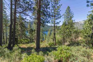 Listing Image 6 for 10455 Donner Lake Road, Truckee, CA 96161